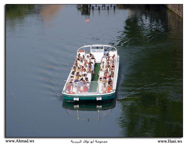 المركب