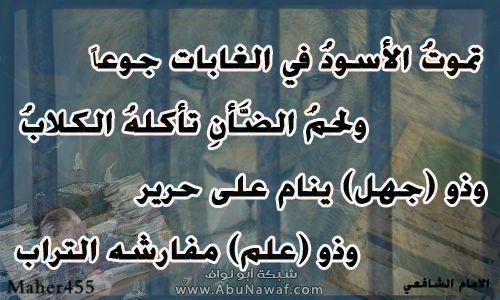 الشافعي rhihs6xqo8670kqutgrd